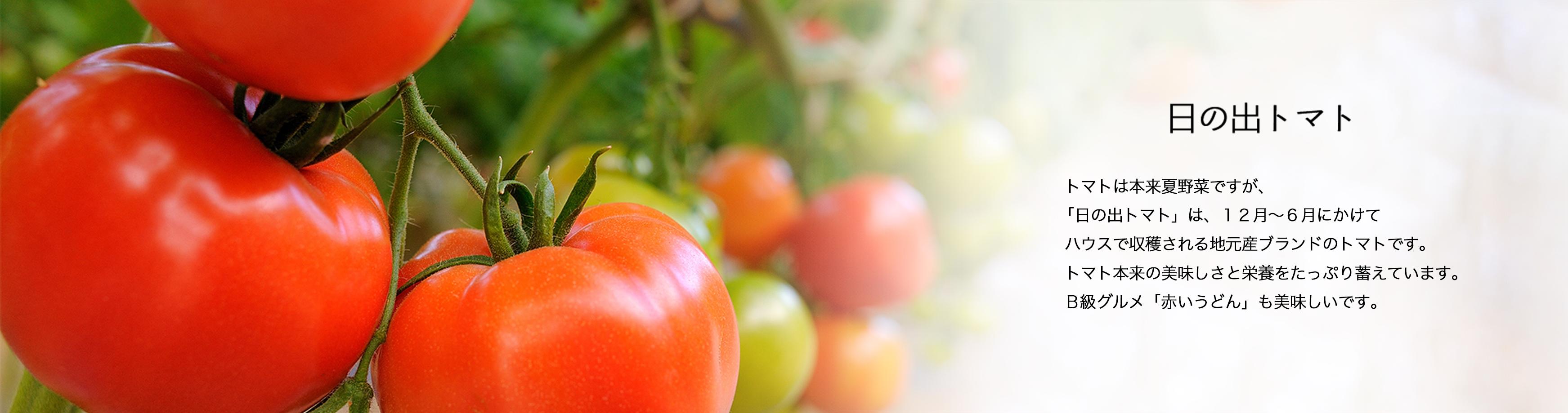日の出トマト トマトは本来夏野菜ですが、 「日の出トマト」は、12月〜6月にかけて ハウスで収穫される地元産ブランドのトマトです。 トマト本来の美味しさと栄養をたっぷり蓄えています。 B級グルメ「赤いうどん」も美味しいです。
